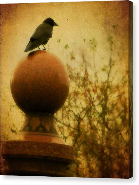 Ravens In Graveyard Canvas Print - Autumn Wash by Gothicrow Images
