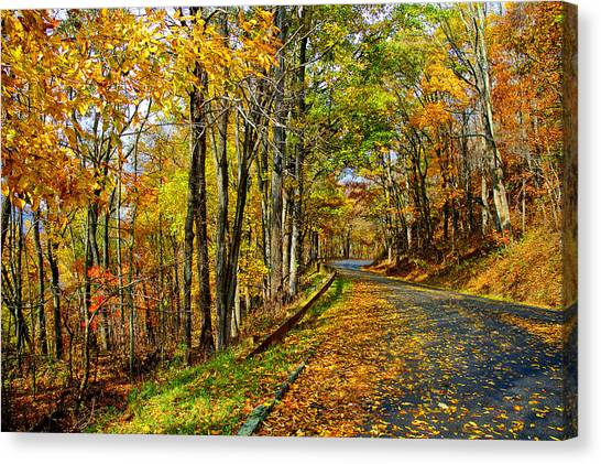 Autumn Winding Road Canvas Print
