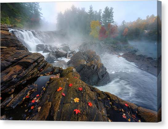 Ontario Canvas Print - Autumn by Yi Jiang