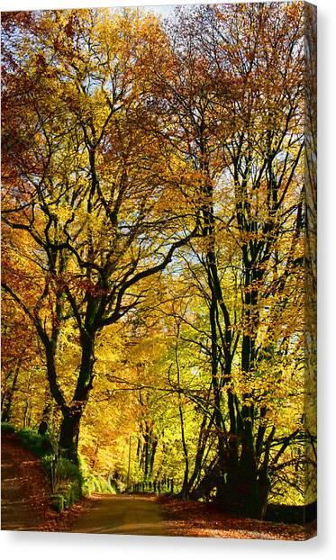 Autumnal Lane Dulverton Canvas Print