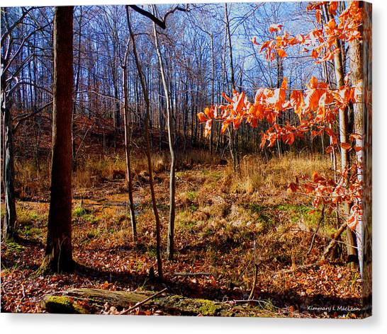 Ebsq Digital Canvas Print - Autumn's End by Kimmary MacLean
