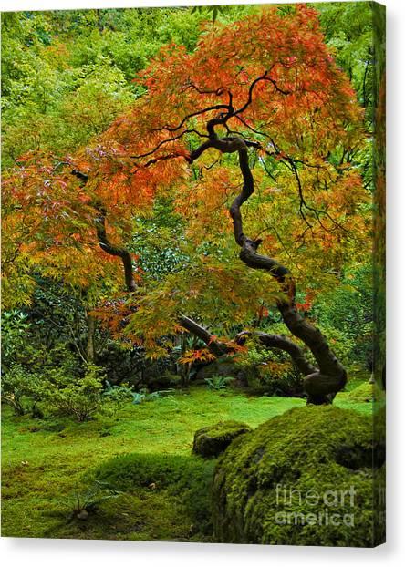 Autumn's Paintbrush Canvas Print