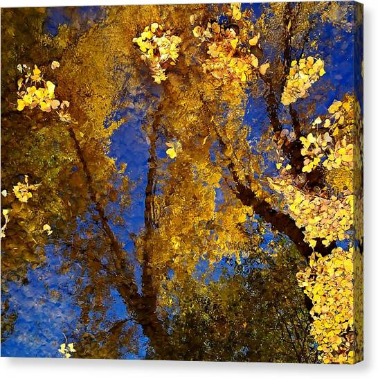 Autumns Reflections Canvas Print