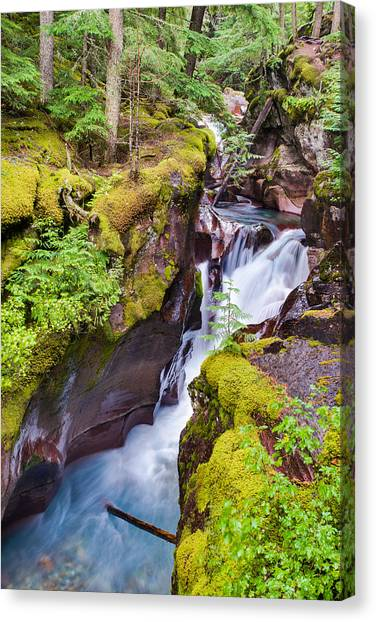Avalanche Gorge 3 Of 4 Canvas Print