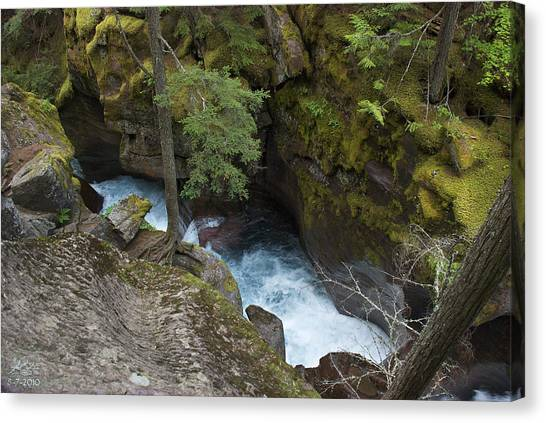 Avalanche Creek Canvas Print