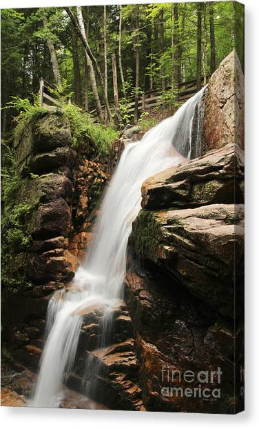 Avalanche Falls Canvas Print