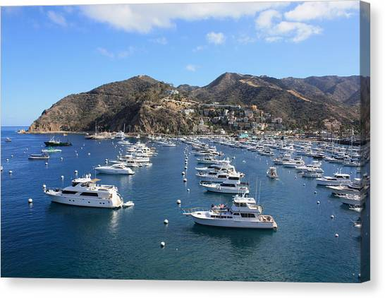 Avalon Harbor Canvas Print
