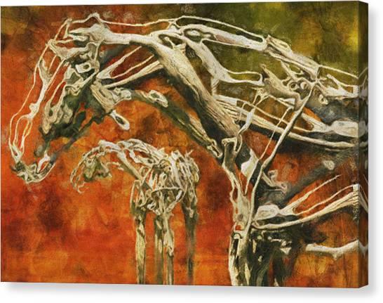 Installation Art Canvas Print - Aware by Jack Zulli