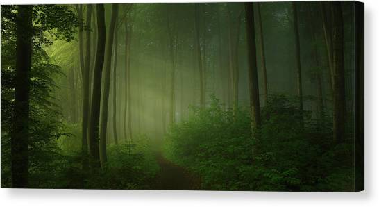 Panorama Canvas Print - Away From City Strife by Norbert Maier