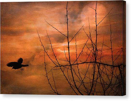 Away Home Canvas Print