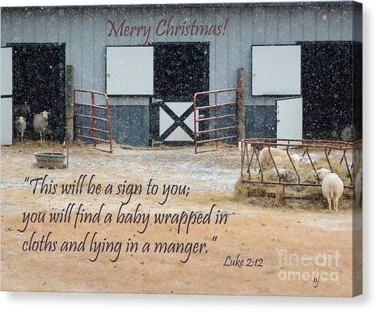 In A Manger Canvas Print