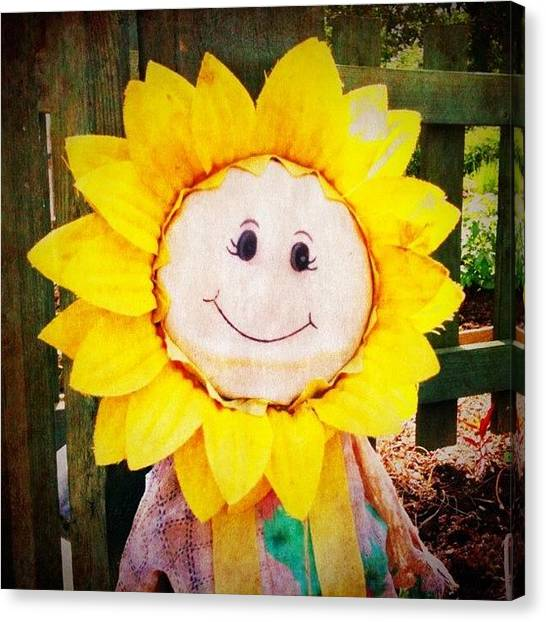 Scarecrows Canvas Print - #awesomized #sunflower #doll #allotment by Enoch Soames