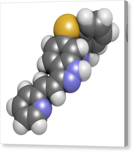 Axitinib Cancer Drug Molecule Canvas Print by Molekuul