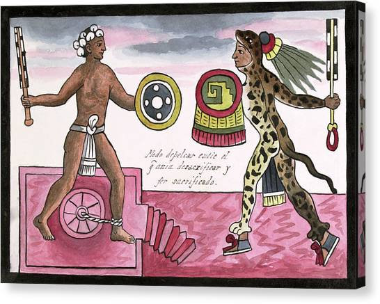 Aztec Sacrificial Fight Canvas Print by Library Of Congress