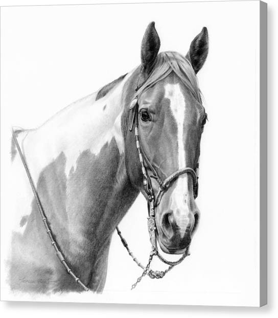 Equestrian Canvas Print - B And W Study by JQ Licensing