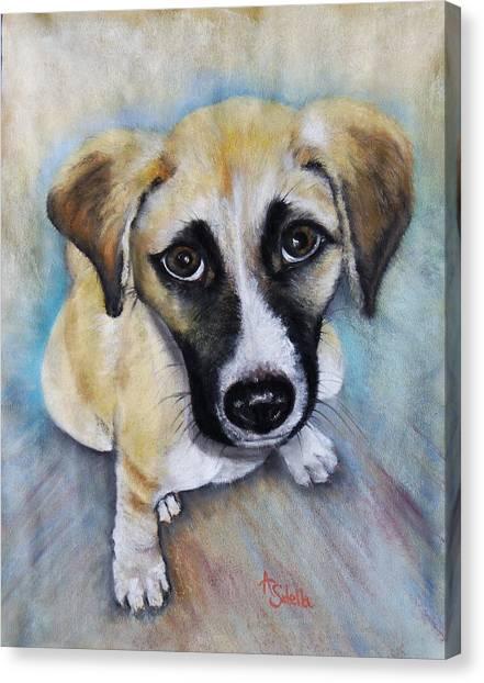 Baby Addie Canvas Print