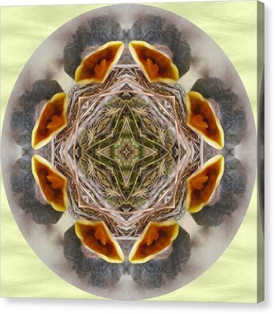 Baby Bird Kaleidoscope Canvas Print