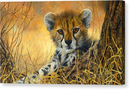 Baby Cheetah  Canvas Print