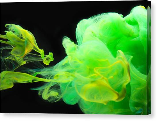 Baby Dragon - Abstract Photography Wall Art Canvas Print