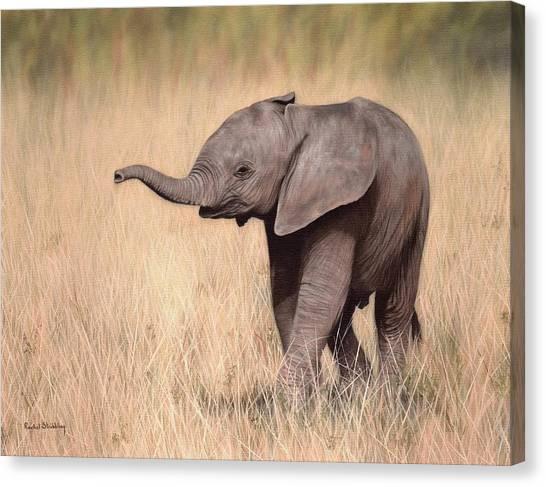 Elephant Calf Painting Canvas Print