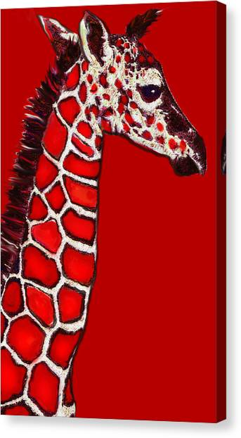 Baby Giraffe In Red Black And White Canvas Print