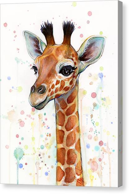 Boy Canvas Print - Baby Giraffe Watercolor  by Olga Shvartsur