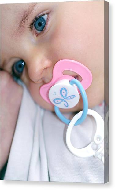 Dummies Canvas Print - Baby Girl Sucking A Dummy by Lea Paterson/science Photo Library