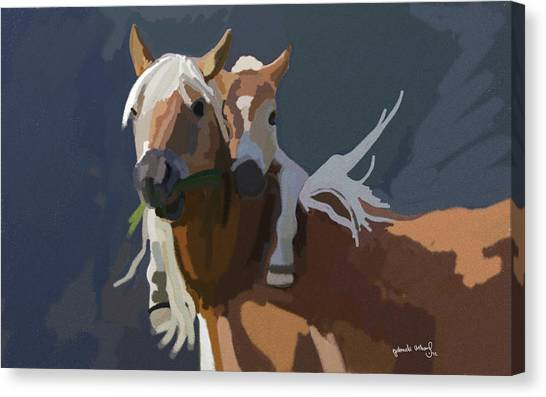 Baby Horse Canvas Print by Nydia Williams