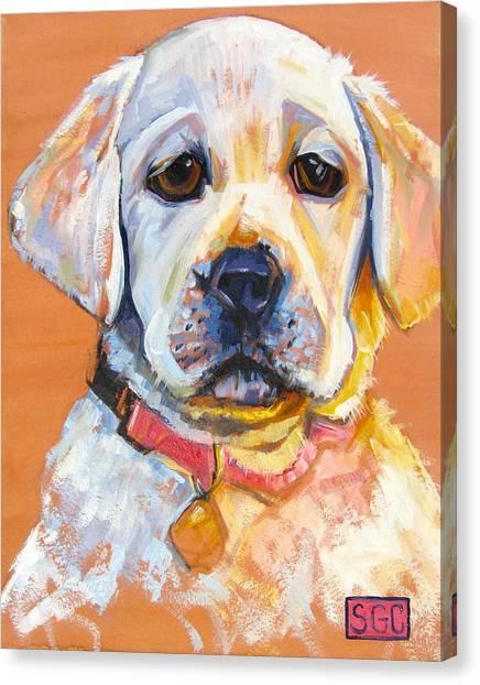 Baby Lulu Canvas Print