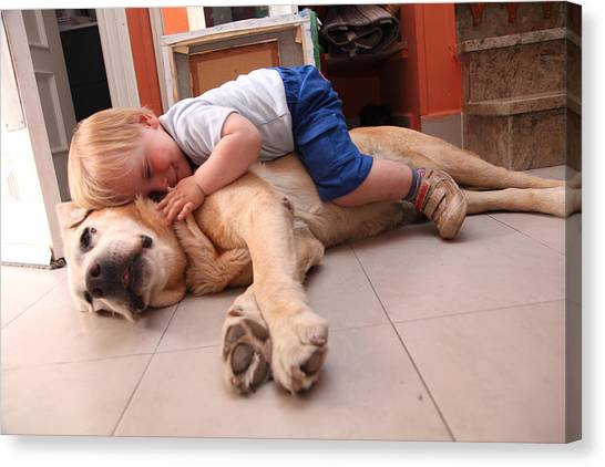 Baby On A Dog, Cares About Dog Canvas Print by Aitor Diago