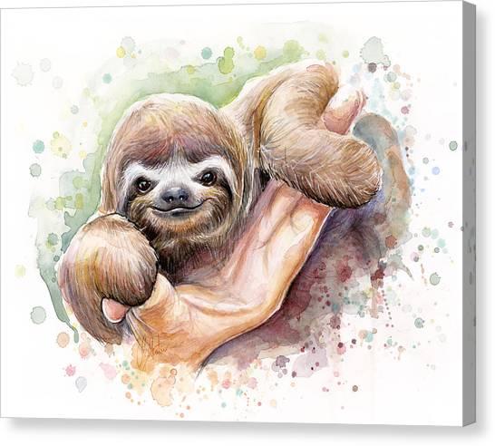 Zoo Canvas Print - Baby Sloth Watercolor by Olga Shvartsur