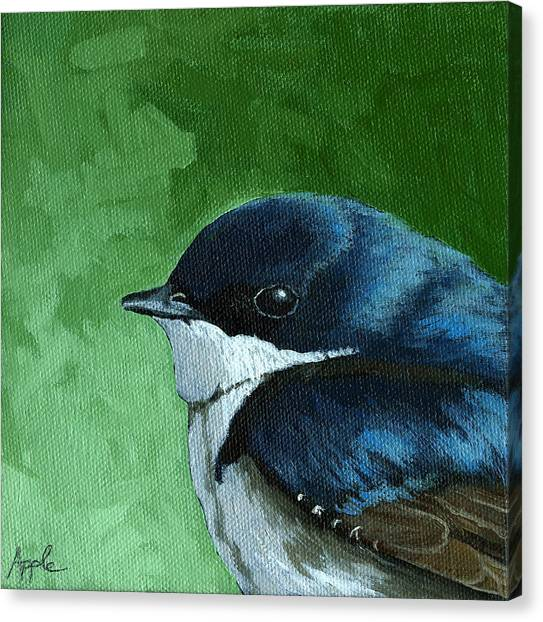 Baby Tree Swallow Canvas Print