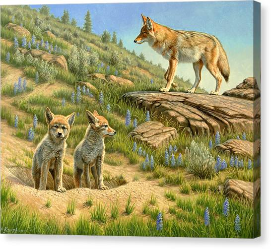 Puppies Canvas Print - Babysitter  -  Coyotes by Paul Krapf