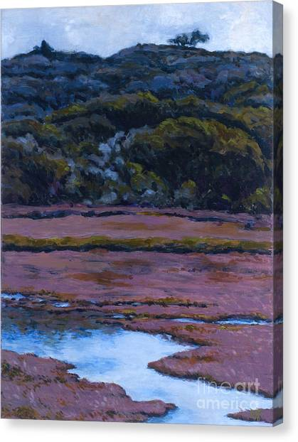 Back Bay At Morro Bay Canvas Print