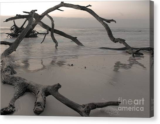 Canvas Print featuring the photograph Back From The Edge by Glenda Wright