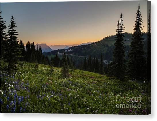 Mount Rainier Canvas Print - Back To Paradise by Mike Reid