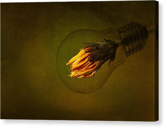 Clean Energy Canvas Print - Back To The Green Future by Dusan Macko