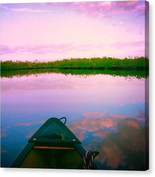 Everglades Canvas Print - Back When I Was A College Outdoor by Steven Shewach