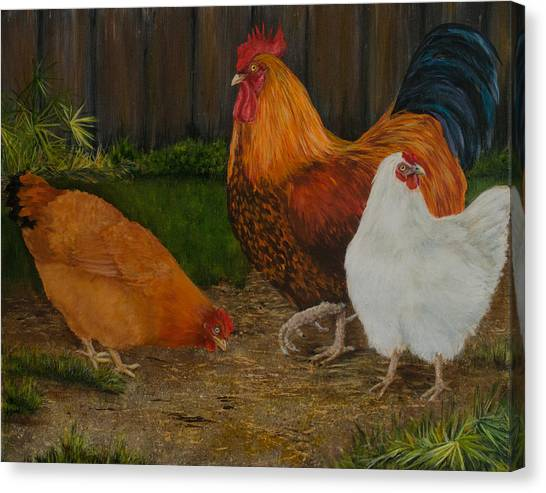 Back Yard Flock Canvas Print