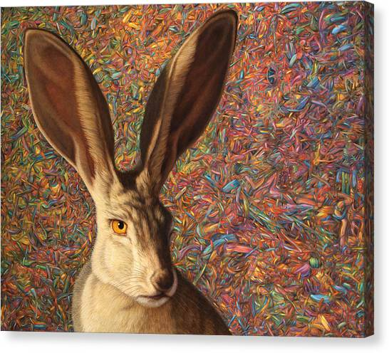 Rabbit Canvas Print - Background Noise by James W Johnson