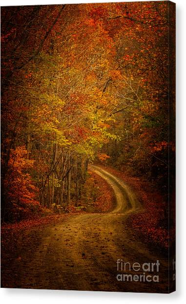 Backroad Color Canvas Print