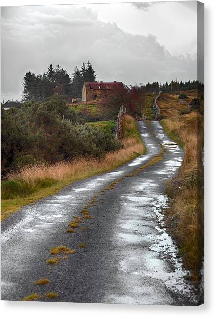 Backroads Of Ireland Canvas Print