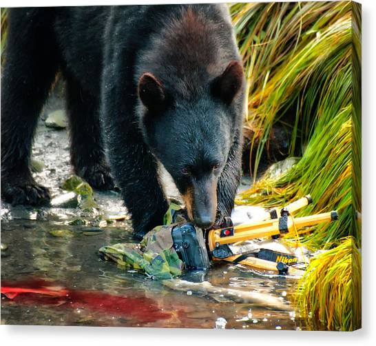 Bad Day For Nikon Canvas Print
