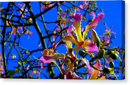 Bad Orchid  Canvas Print