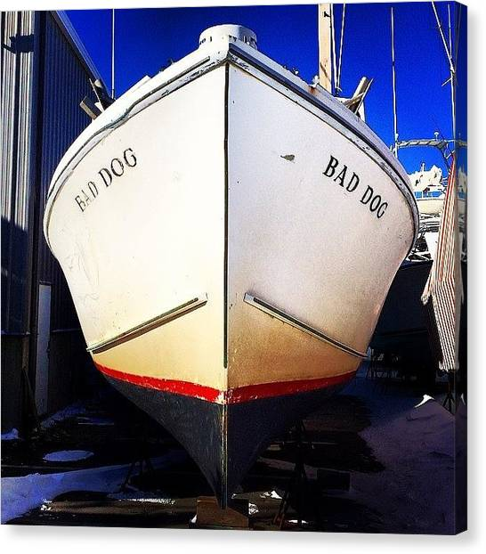 Fishing Boats Canvas Print - Bad Dog by Dan Gilrein