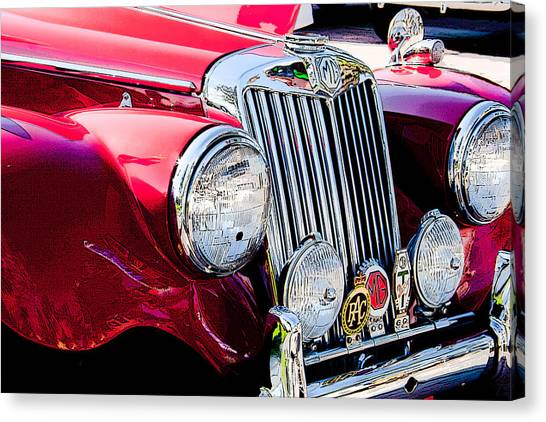 Badge Of Honor Canvas Print