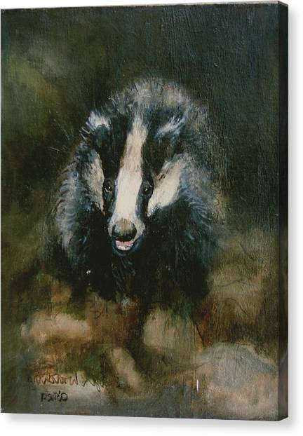 Approach Canvas Print - Badger Watching by Ellie O Shea