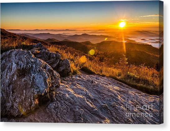 Pisgah National Forest Canvas Print - Golden by Anthony Heflin