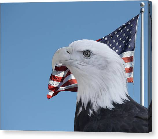 Bald Eagle And Flag Canvas Print