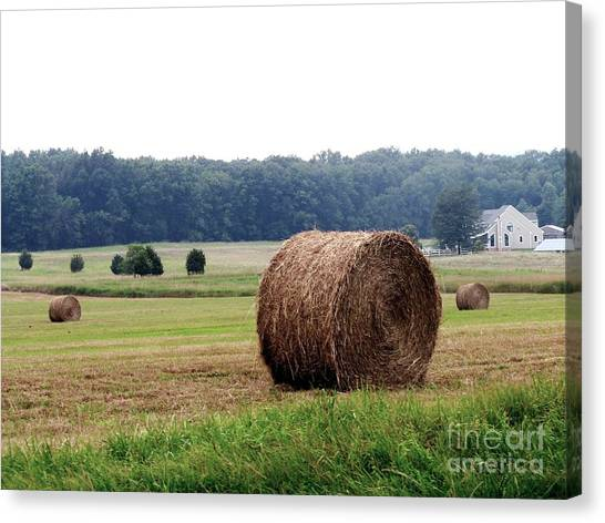Bales In Solebury Canvas Print